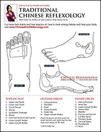 reflexology points associated with the foot top and sides. reflexology points associated with the foot top and sides. Reflexology Points, Reflexology Massage, Foot Chart, Eft Tapping, Muscle Anatomy, Lymphatic System, Travel Humor, Pressure Points, Massage Therapy
