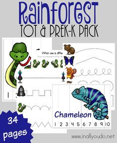 Rainforest Tot & PreK-K Pack 34 total pages – In All You Do - insightful. Jungle Preschool Themes, Rainforest Preschool, Rainforest Crafts, Rainforest Habitat, Rainforest Theme, Rainforest Animals, Free Preschool, Preschool Printables, Preschool Lessons