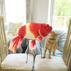 felted giant ranchu (click on the picture to visit this wonderful Japanese artist's etsy shop)