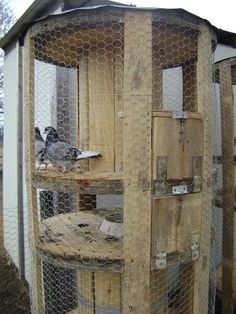 Chicken coop made from wooden spools- I would love to have our own chickens! Large Wooden Spools, Wooden Cable Spools, Wire Spool, Chicken Coop Decor, Chicken Coops, Wooden Cable Reel, Spool Crafts, Backyard Paradise, Bird Cages