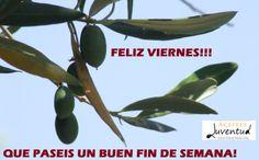#FF Felíz Viernes y Buen Fin de Semana a todos!