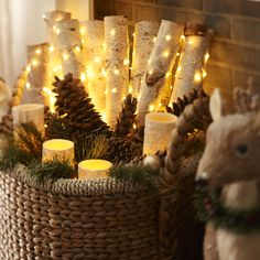 Birch Pillars LED with fairy lights, fir needles and pine cones - all tucked into a basket. Would look great on the hearth for Yule
