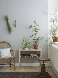 Adore all the natural touches in this room, especially the gathered cut greens hung on the wall : Eco Simplicity – Emma von Brömssen