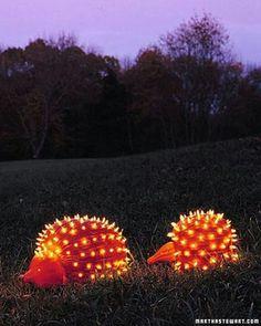 To cute... pumpkins