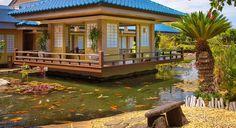 Imari at hilton waikoloa village Hilton Waikoloa Village, Teppanyaki, Big Island, Kauai, Restaurant, Mansions, House Styles, Places, Islands