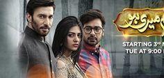 Watch Tum Meri Ho Episode 15 18th August 2016 Full HD Online on Ary Digital