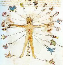 Resultado de imagem para neuronios