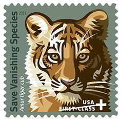 Save Vanishing Species