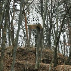 An enormous woodland nesting box by Japanese designers Nendo with 78 entrances for birds on one side and one big door for humans on the other