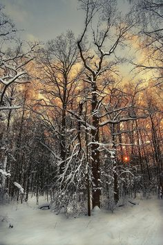 Winter sunset, Moscow, Russia