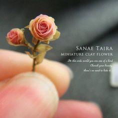 by Sanae Taira