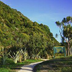Au nord-ouest de l'île du Sud de la Nouvelle-Zélande, le plus haut point accessible en voiture est à Karamea. Un petit village avec une très belle plage sauvage, typique de la côte ouest. C'est aussi le point de départ ou d'arrivée de la randonnée «Heaphy Track», le sentier de 80 kms qui rejoint Golden Bay en traversant des paysages incroyablement variés, de montagnes à forêts luxuriantes du parc national de Kahurangi. Amateurs de randonnées, celle-ci est incontournable! . #greatwalks… Parc National, Point, New Zealand, Sidewalk, Instagram, West Coast, Nice Beach, Mountains, Pathways