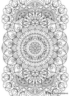 Coloring Book For Adults COLORS OF CALM By Egle Stripeikiene