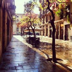 Barrio del Borne, Barcelona España