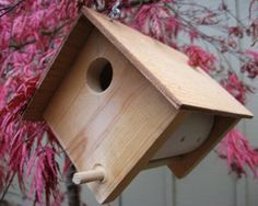 DIY birdhouse..  this looks like it may be a better design than the what I am use to....  will have to try it.... dw