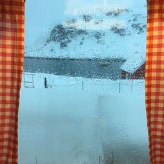 my view @visitmasoy @northernnorway @ig_nordnorge #finnsta #yrbilder #havøysund #politiken_rejser #natur #utpåtur #mittnordnorge #alltidreiseklar #nordnorge #norge #norway #finnmark #fiskevær