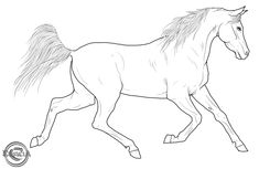 Free Horse Lineart 01 by Eduscia on DeviantArt