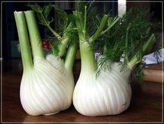 Plantar semillas de hinojo y melón