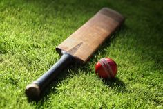 cricket bat and ball - Google Search