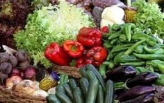 FAO debate sobre desperdicio de alimentos y cambio climático | PROhumana Blog de RSE en Chile