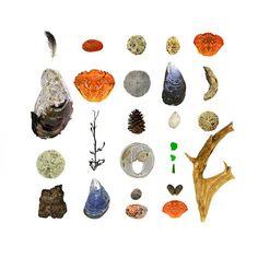 found driftwood shells beach glass etsy art
