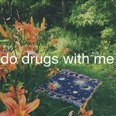 Do Drugs With Me.
