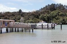 hobsonville - Google Search