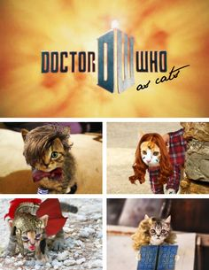 Doctor Who With Cats. o wow