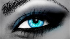Eye Photography | Download Blue Eye HD Wallpaper—Free Wallpaper
