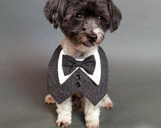 Dog Tuxedo, Dog Wedding Attire, Pet Wedding Clothes, Tuxedo Dog ...