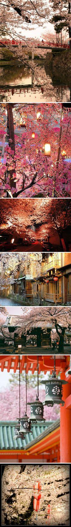 Beauitiful Spiritual Japan  ♥♥