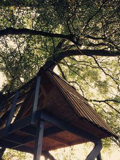 Lovely Triangular tree house