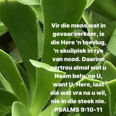 Niv Bible, Bible Quotes, Prayers For Children, Goeie More, Afrikaans Quotes, After Break Up, Finding God, How To Protect Yourself