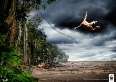 Tarzan for WWF (WWF International) by Uncle Grey Print Denmark « of rainforest disappears every minute. Tarzan, Funny Commercials, Funny Ads, Funny Images, Funny Pictures, Creative Advertising, Advertising Ideas, Funny Advertising, Guerrilla Advertising