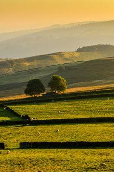 wanderthewood:  Evening light near Hathersage - Peak District, England by Peter Quinn1