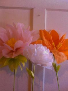 Tissue paper flowers. by Juli@