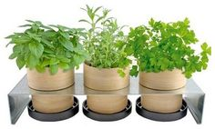 Design Of Your Garden : Plant Pot Holders | www.coolgarden.me