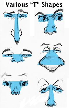 t-shapes eyes/nose (http://www.tomrichmond.com/blog/2008/02/21/how-to-draw-caricatures-relationship-of-features/