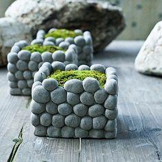 Celestte(TM) Succulent Planter Pot, Unique Stone Design F... https://www.amazon.com/dp/B01ESMYPTC/ref=cm_sw_r_pi_dp_NH8Exb68ED43Z