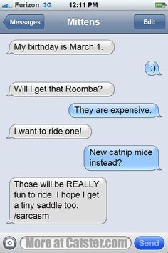 Texts from Mittens: The Birthday Edition | Catster