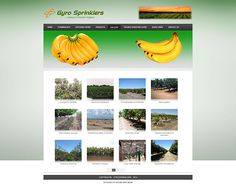 Gyro Sprinklers Sky Online, Sprinklers, Online Portfolio, Autumn, Sprinkler, Fall Season, Fall, Fire Sprinkler System