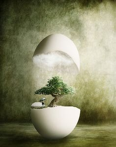 'Hatching Thoughts' by Matteo Pontonutti Moon Photography, Surrealism Photography, Creative Photography, Surreal Artwork, Surreal Photos, Surealism Art, Composition Art, Logo Design Tutorial, Photoshop