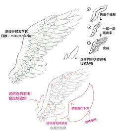 🌸~Credits to the artist for these beautiful wings~🌸 Drawing Skills, Drawing Techniques, Drawing Tips, Drawing Sketches, Wings Drawing, Body Drawing, Drawing Base, Art Reference Poses, Drawing Reference