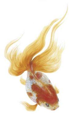 Goldfish painting by Ryusuke FUKAHORI, Japan