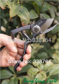 2014 Top Fasion Sale Pruners Not Coated Fruits Pruning Shears Tools Branch Anti-slip Grip Cut Fruit Small Twigs Garden Pruner