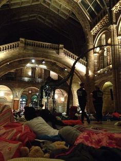 Twitter / TurnerRE: @NHM_London dinosnores A ...