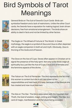 The bird symbolism meanings of Tarot cards for beginners! If you're just learning how to read Tarot or practice divination and fortune telling, then learning the interpretations of signs and symbols is a good place to spend your time! Here, I am going to show you the meanings of the birds on The Rider Waite Tarot Card Deck including The Star, 9 of Pentacles, Ace of Cups, Wheel of Fortune, The World and the Swords suit! #tarotcardsforbeginners