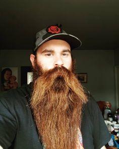 Crazy Beard, Full Beard, Epic Beard, Walrus Mustache, Beard No Mustache, Long Beard Styles, Hair And Beard Styles, Great Beards, Awesome Beards