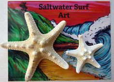 Set of 2 Hand Made Starfish Barrettes -- This is an Amazon Affiliate link. Details can be found by clicking on the image.