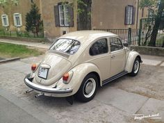 Beetle Bug, Vw Beetles, Vw Bus, Custom Vw Bug, Automobile, Porsche, My Ride, Motor Car, Classic Cars